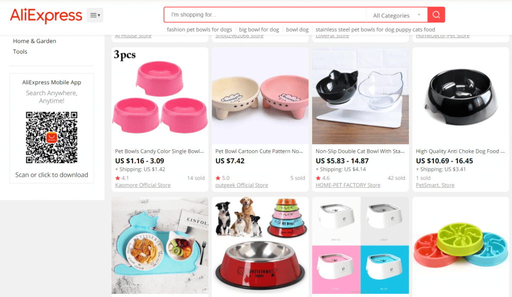 monetize blog with dropshipping